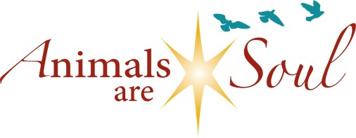 Animals are Soul Blog Logo
